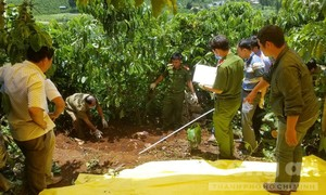 Cận cảnh khám nghiệm hiện trường vụ 3 bà cháu bị giết rúng động ở Lâm Đồng