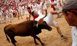 Khốc liệt lễ hội bò rượt ở Tây Ban Nha