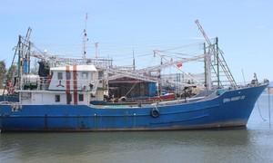 Nhiều tàu cá công suất lớn ở Quảng Nam nằm bờ vì không hiệu quả
