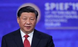 Chủ tịch Trung Quốc gọi virus Vũ Hán là 'con quỷ'