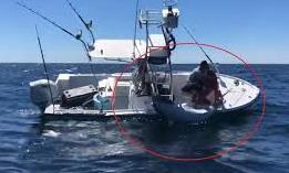 """Clip ngư dân câu được cá ngừ """"khủng"""" hơn 300 kg"""