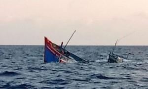 Tàu cá Bình Định chạy bão bị chìm, 12 ngư dân mất tích