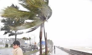 Trên đất liền Quảng Nam, Quảng Ngãi, Bắc Bình Định có gió giật cấp 14