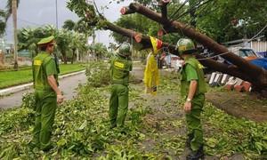 Quảng Nam, Quảng Ngãi ngổn ngang sau bão số 9