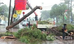 Gia Lai, Hà Tĩnh sơ tán dân khỏi vùng nguy cơ sạt lở, ngập lụt
