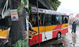 Tài xế nguy kịch, hành khách thoát chết khi xe buýt đâm gốc cây