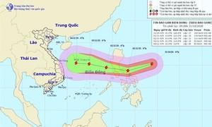 Siêu bão Goni sẽ giảm cấp khi vào Biển Đông