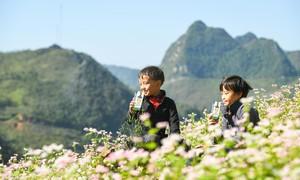 Vinamilk và Quỹ sữa Vươn cao Việt Nam tặng 94.000 ly sữa tại Hà Giang
