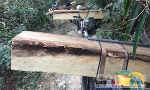 Mật phục bắt đoàn xe chở gỗ lậu, tạm giữ 12 đối tượng
