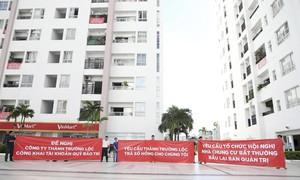 TP.Hồ Chí Minh: Cả trăm dự án chờ... sổ hồng