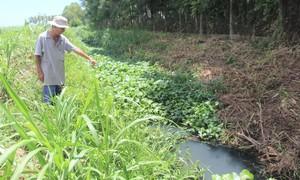 Người dân phản ánh các nhà máy ở cụm công nghiệp Đồng Dinh gây ô nhiễm