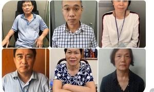 12 lãnh đạo và nhân viên công ty Unimex và Trung tâm Artex bị bắt, khởi tố