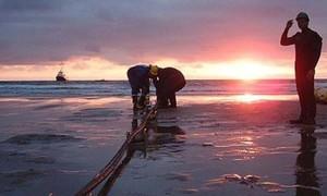 Cáp quang biển dự kiến 'hư xuyên Tết'