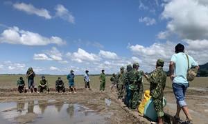 Thu giữ 21kg cần sa khô vận chuyển từ Campuchia về Việt Nam