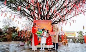 Sun World Ba Na Hills hút khách dịp Tết Tân Sửu