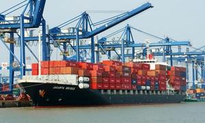 Hàng qua cảng biển Việt Nam đạt kỷ lục, Mỹ là thị trường xuất khẩu lớn nhất