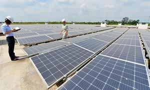 Bắt Giám đốc người Trung Quốc buôn lậu pin năng lượng trị giá trăm tỷ đồng