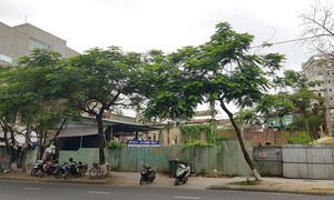Nhiều sai phạm khi bán nhà đất công sản ở Thừa Thiên Huế