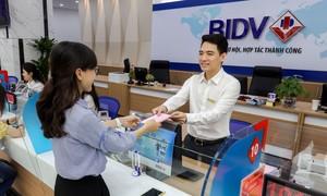BIDV miễn phí sử dụng phần mềm chuyển đổi số cho HKD chuyển thành doanh nghiệp