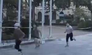 """Tập thể dục dẫn theo chó đi dạo vì """"nhu cầu cấp thiết"""", bị phạt 2 triệu đồng"""