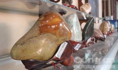 Bộ sưu tập đá hóa thạch độc đáo ở TP.Biên Hòa
