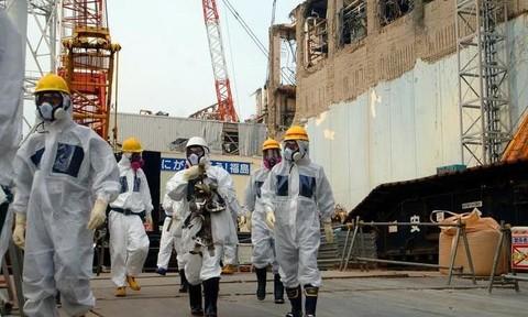 Chất phóng xạ ở nhà máy Fukushima được tìm thấy trong rượu Mỹ
