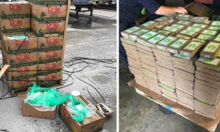 Giấu cocain trị giá gần 18 triệu USD vào các thùng chuối 'tuồn' vào tù