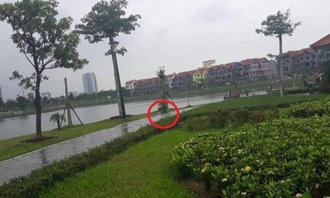 Người đàn ông chết trong hồ điều hòa nghi bị sát hại