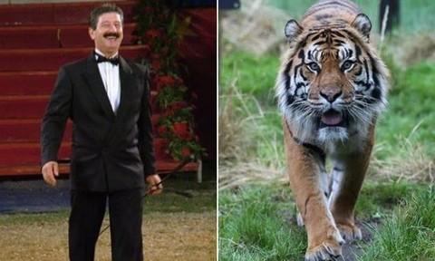 Nghệ sĩ xiếc thú hàng đầu thế giới bị 4 con hổ vồ chết ở Ý