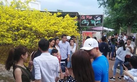 """Nhộn nhịp người đến check-in """"cụ mai"""" tại Đồng Nai"""