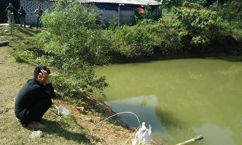 Lâm Đồng: Hai cháu bé chết đuối tại ao nước tưới rau