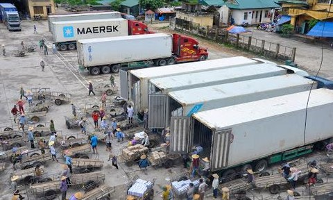 Trung Quốc không cho lái xe từ vùng dịch giao nhận hàng tại cửa khẩu