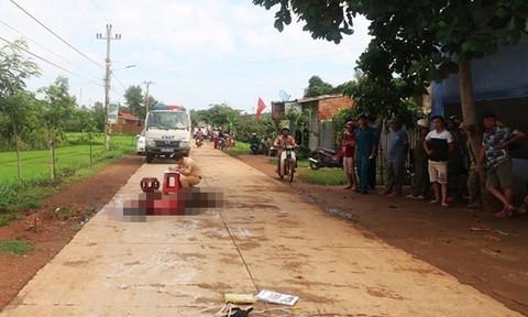 Nhờ camera phát hiện xe tải tông chết người rồi bỏ trốn