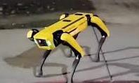 """Clip chó robot gây """"hoang mang"""" trên đường phố Canada"""