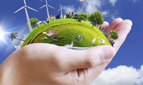 Thuận thiên để sống và phát triển bền vững