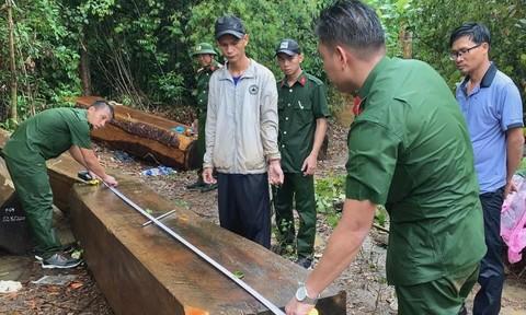 Để rừng bị tàn phá, Hạt trưởng kiểm lâm bị kỷ luật cảnh cáo