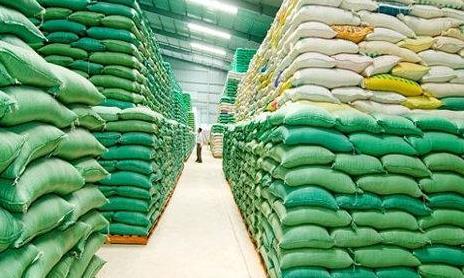 Hoàn tất việc giao, nhận hơn 56.500 tấn gạo cho TPHCM đến hết ngày 8/10